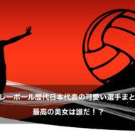 女子バレーボール 歴代 日本代表 可愛い選手